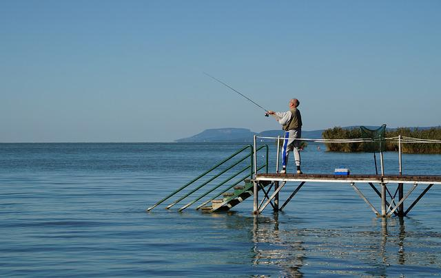 Lake, Balaton, Fisherman, Fish, Fishing, Cast, Old Man