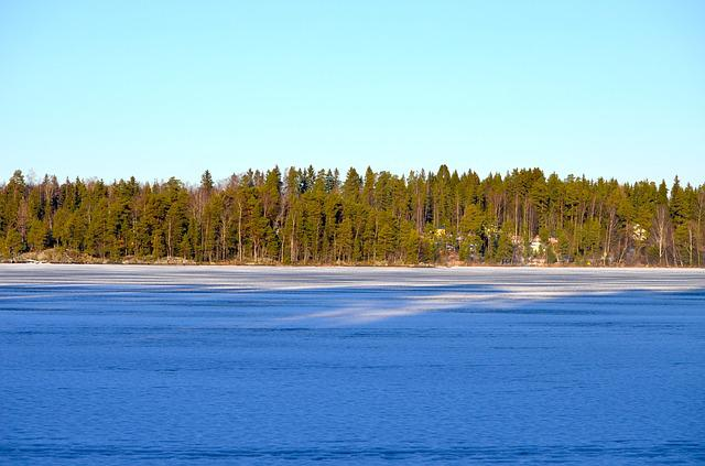 Frozen Lake, Forest, Ice, Frozen, Lake, Nature