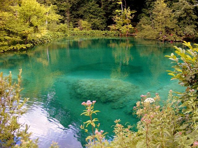 Lake, Blue, Forest, Plitvice, Croatia