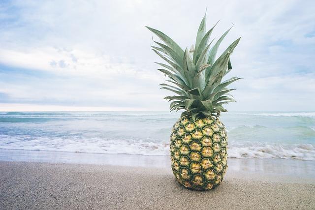 Beach, Fruit, Lake, Ocean, Pineapple, Sand, Summer