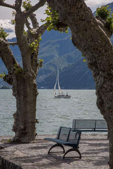 Lake, Lago Maggiore, Holiday, Sailing Boat