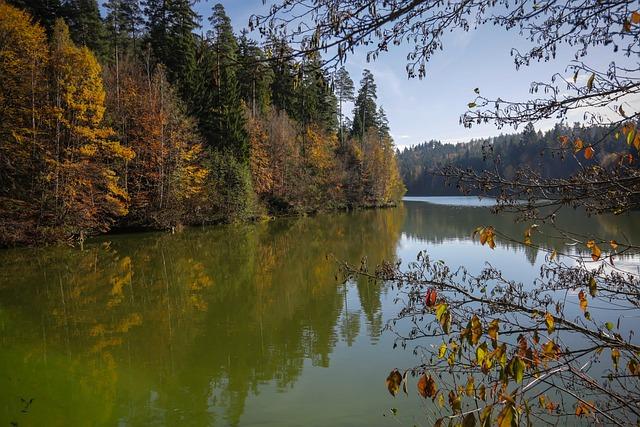 Adelberg, Mr Bacher Reservoir, Lake, Retention Basin