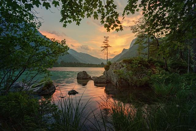Nature, Waters, Tree, Landscape, Lake, Reflection