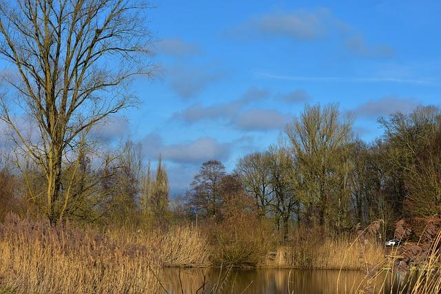 Landscape, Panorama, Grass, Sky, Water, Lake