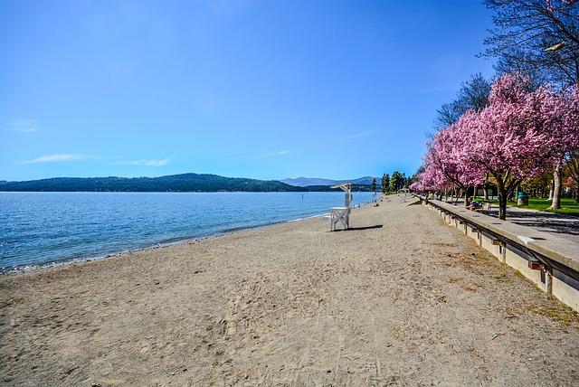 Beach, Trees, Flower, Lake, Mountains, Shore, Serene