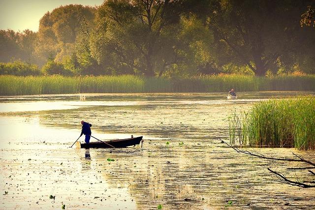 Pond, Lake, The Fisherman, Boat, Angler, Sunrise