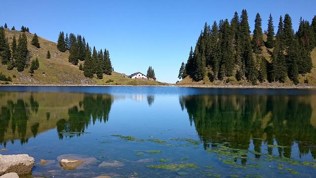 Mountain, Alpe, Lake, Landscape, Sky, Forests, Trees