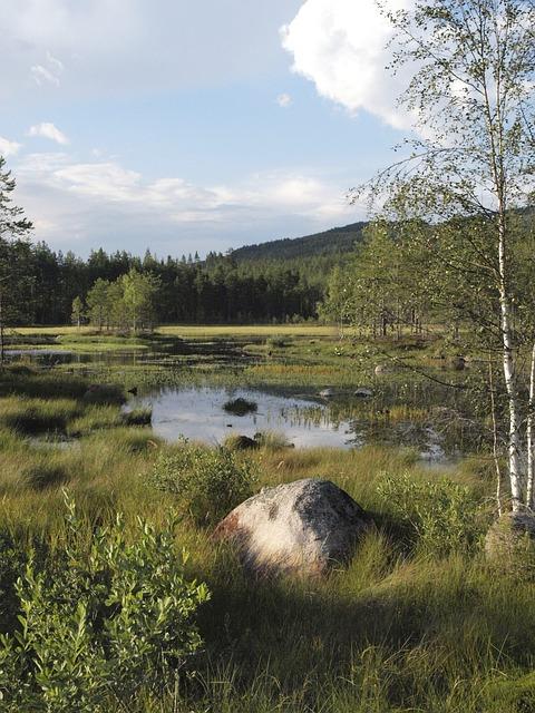 Island, Sweden, Lake, Värmland