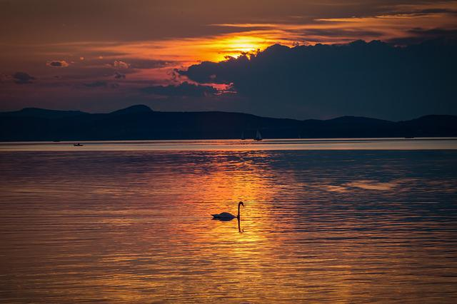 Lake Balaton, Sunset, Nature, Lake, Landscape, Water