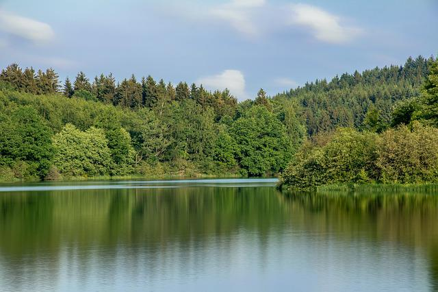 Lake, Waters, Water, Nature, Forest, Mixed Forest