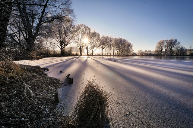Winter, Lake, Cold, Wintry, Frozen, Snow, Iced, Sunrise