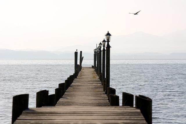 Web, Boardwalk, Water, Lake, Wooden Boards, Lanterns