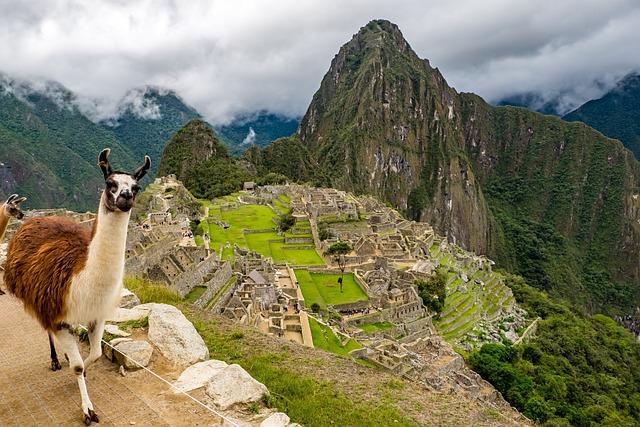 Peru, Machu Picchu, Lama, World Heritage, Landscape