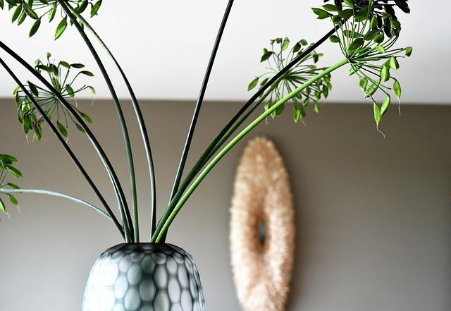 Vase, Agapanthus, Lamp, Indoors, Deco