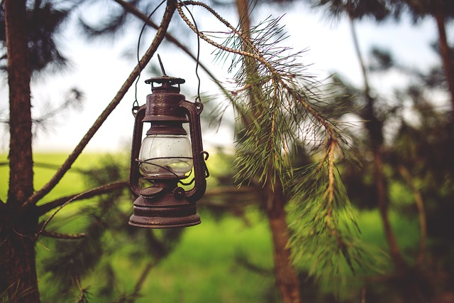Kerosene, Lamp, Woods, Paraffin, Light, Old, Vintage