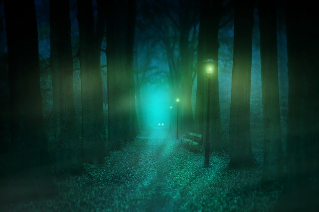 Photo Manipulation, Forest, Lamps, Bank, Trees, Leaves