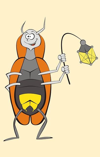 Firefly, Lampyres, Beetles, Beetle, Ecology, Watt
