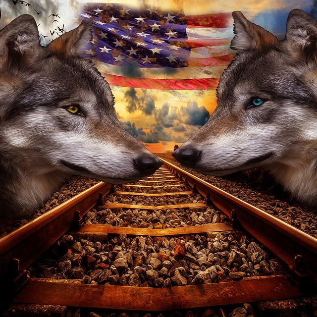Wolf, Rails, Flag, Usa, Portrait, Animal, Landscape