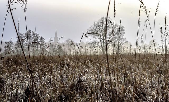 Landscape, Steeple, Twilight, Fog, Church, Atmospheric