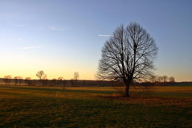 Autumn Landscape, Autumn, Landscape, Autumn Motives