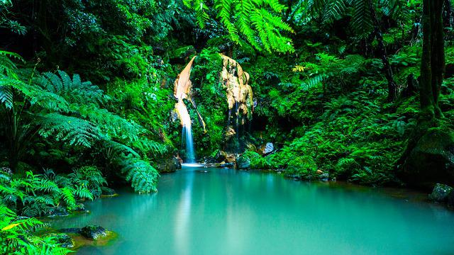 Azores, Waterfall, Oasis, Forest, Portugal, Landscape