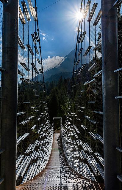 Suspension Bridge, Forest, Portable, Bridge, Landscape