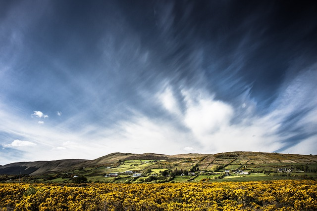 Tourmakeady, Ireland, Landscape, Broom, Sky, Clouds