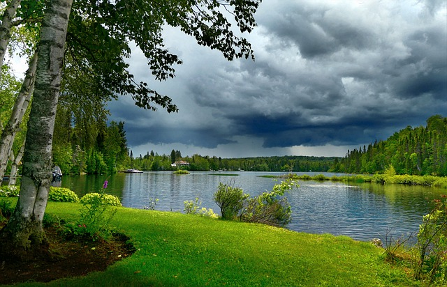 Landscape, Nature, Sky, Trees, Summer, Clouds, Water