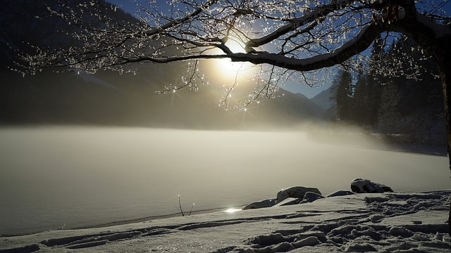 Winter, Lake, Ice, Wintry, Snow, Landscape, Fog, Cold