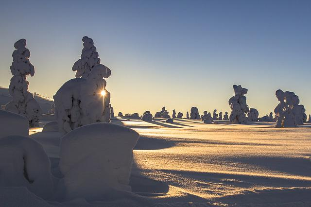 Lapland, Winter, Snow, Landscape, Wintry, Finland, Cold