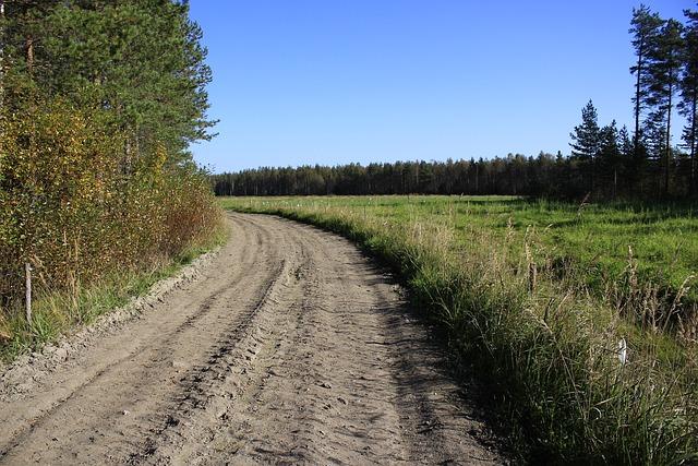 Road, Countryside, Landscape, Finnish, Milieu, Field