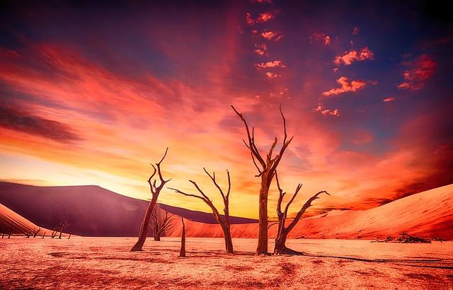 Desert, Arid, Dry, Drought, Landscape, Nature, Natural