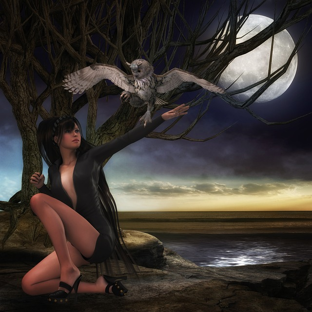 Night, Woman, Bird, Owl, Landscape, Fantasy, Composing