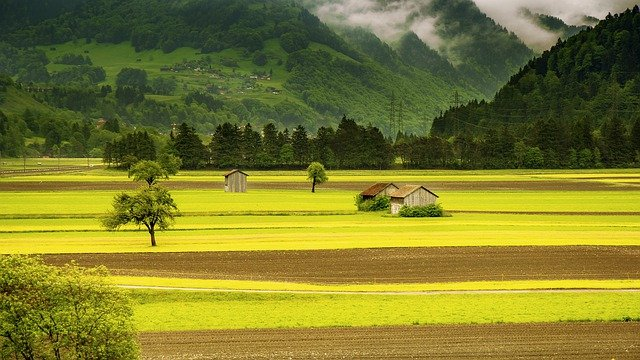 Field, Valley, Landscape, Countryside, Meadow, Farm