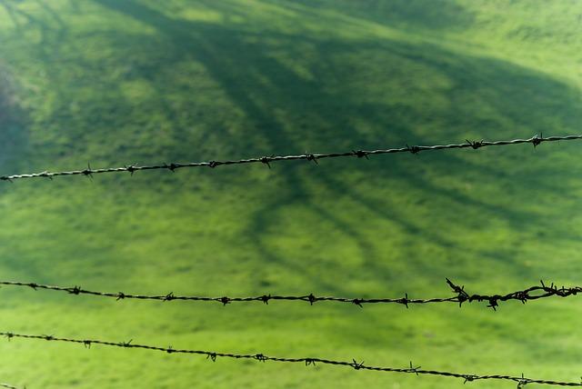 Nature, Landscape, Field, Lawn, Prairie, Shadow