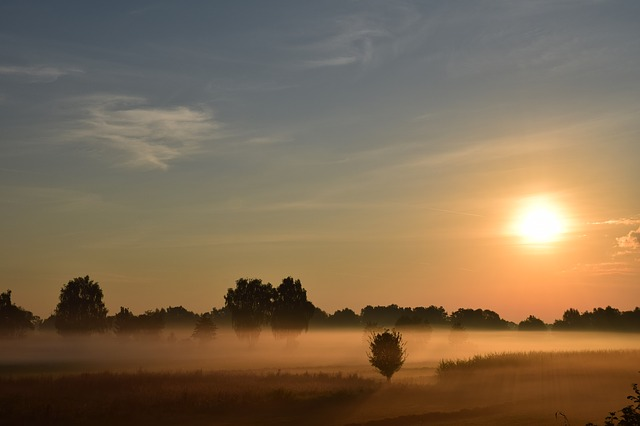 Sunrise, Morning Mist, Haze, Sun, Fog, Trees, Landscape