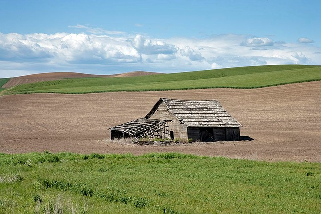 Idaho, Landscape, Field, Barn, Farm