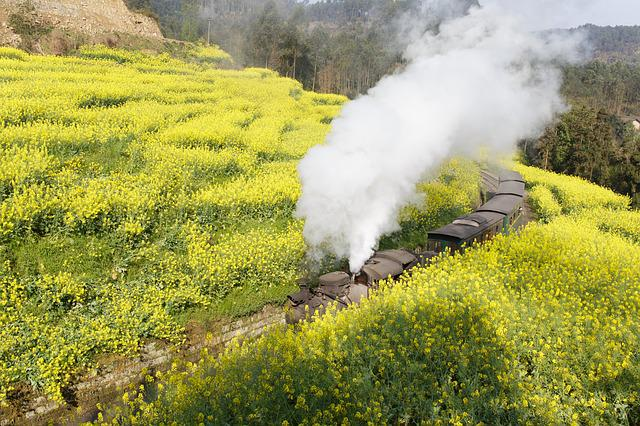 Jia Yang, Train, Landscape, Rape