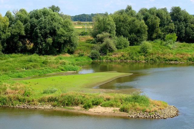 River, Lagoon, Water, Landscape, Tree, Summer, Nature