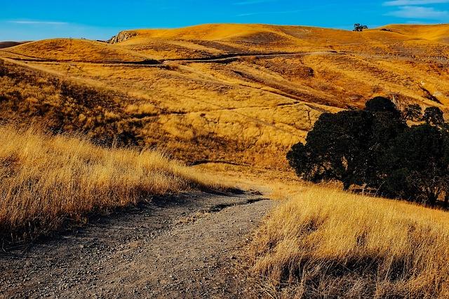California, Landscape, Hills, Mountains, Nature