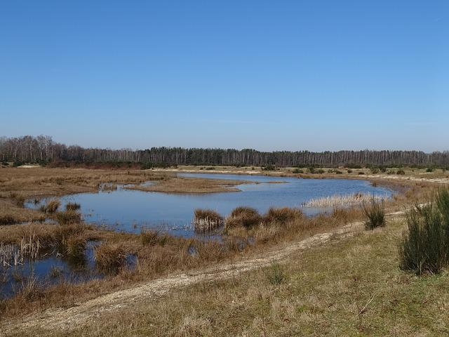 Nature, Water, Plas, Natural Water, Landscape
