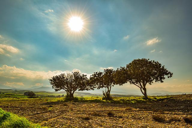 Trees, Landscape, Nature, Sky, Clouds, Scenery