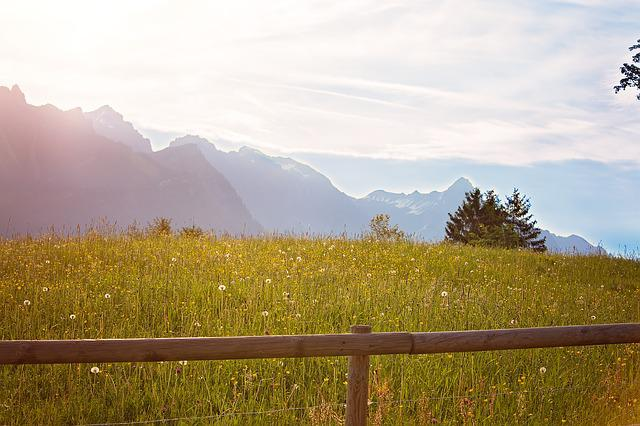 Outlook, Landscape, Meadow, Mountains, Nature, Sky