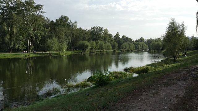 Park, Lake, Forest, Trees, Tree, Nature, Landscape