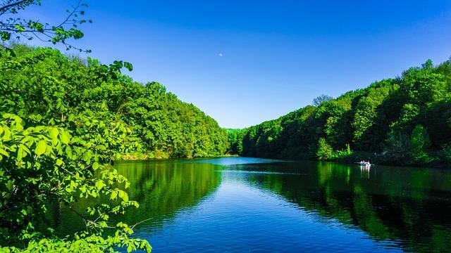 Poltava, Ukraine, Park, Lake, Trees, Landscape, Forest