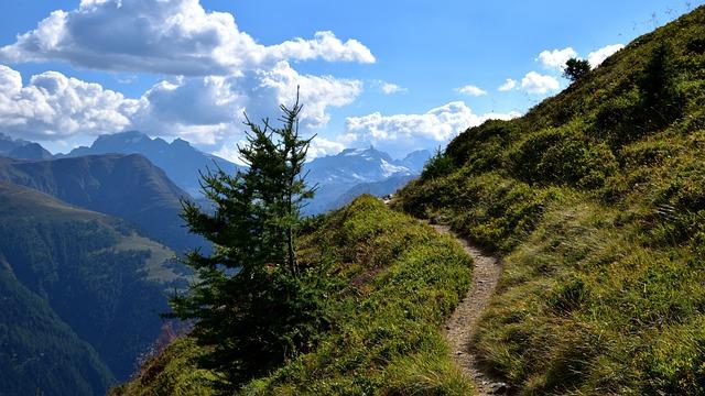 Tree, Away, Landscape, Nature, Path, Trail