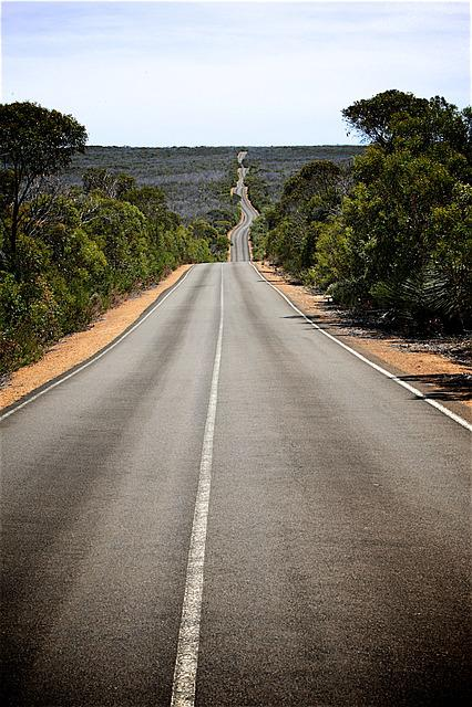 Road, Pavement, Scenery, Horizon, Landscape, Tree-lined