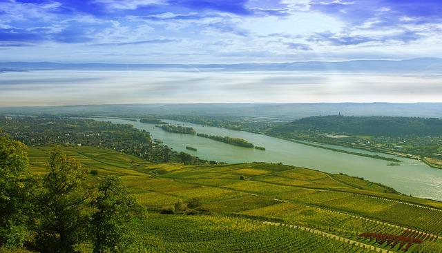 Rhine, Rüdesheim, River, Wasse, Shipping, Landscape
