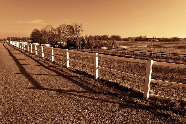 Fence, Road, Field, Farm House, Horizon, Landscape