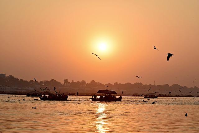 Sunset, Birds, Landscape, Sun, Seagulls, Nature, Beach
